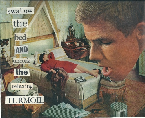 Swallow_The_Bed