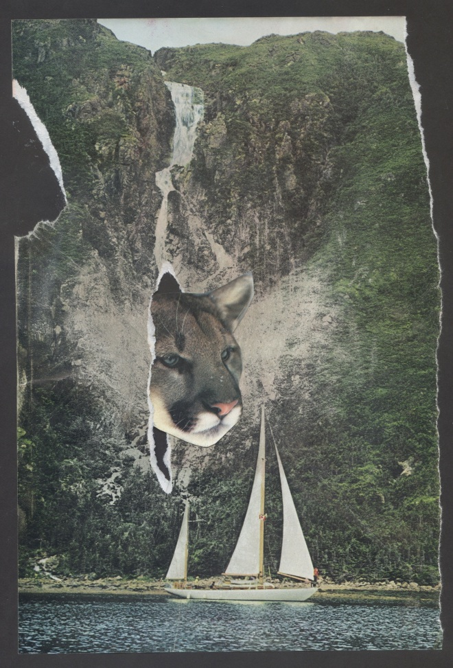 Cougar Cave, June 2014